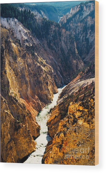 Yellowstone Wood Print featuring the photograph Yellowstone River by Kathy McClure