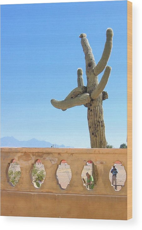 Landscape Photo Wood Print featuring the photograph Arizona Wall With Saguaro by Sarah Gayle Carter