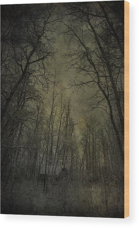 Jerry Cordeiro Photographs Wood Print featuring the photograph Cabin Fever by The Artist Project