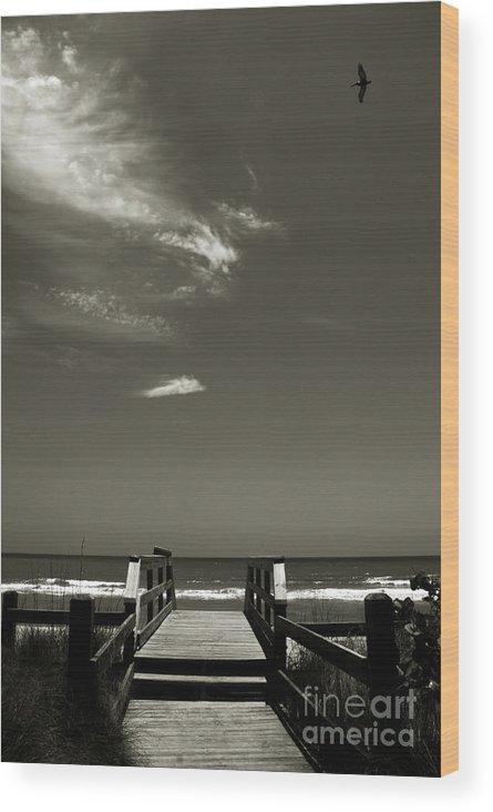 Beach Wood Print featuring the photograph Coconut Point Beach Fl by Susanne Van Hulst