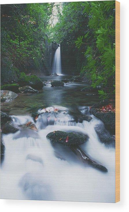 Co Sligo Wood Print featuring the photograph Glencar, Co Sligo, Ireland Waterfall by The Irish Image Collection