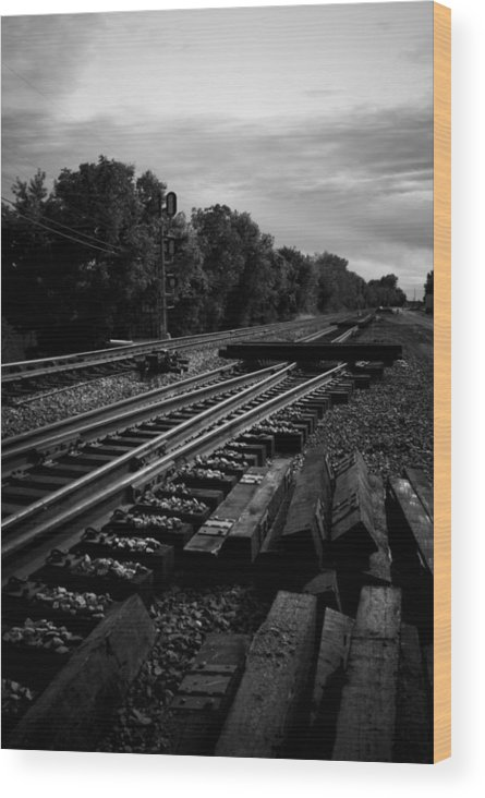 Train Wood Print featuring the photograph On The Tracks by Michael Cunsolo