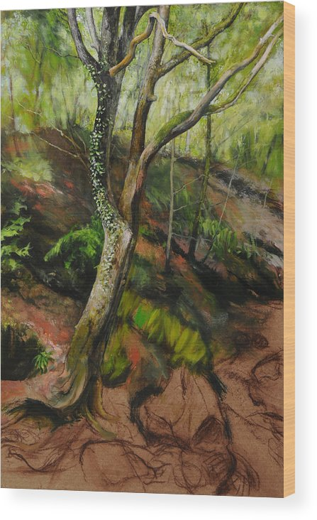 Landscape Wood Print featuring the painting Sketch Of A Treetrunk by Harry Robertson