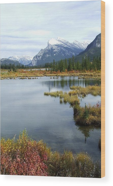 Banff National Park Wood Print featuring the photograph Vermillion Lakes by Tiffany Vest