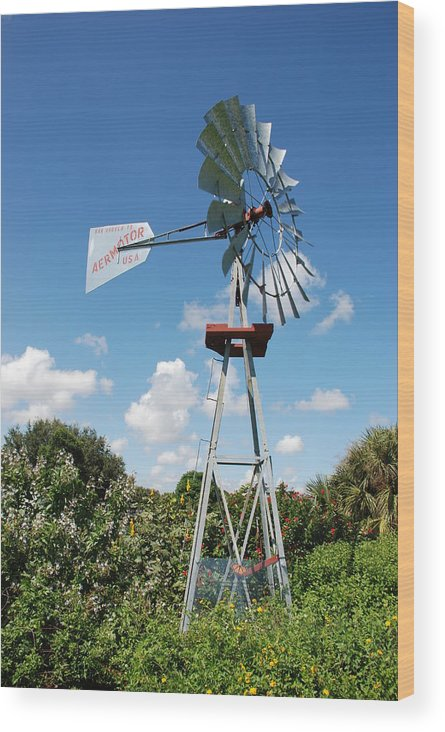 Blue Wood Print featuring the photograph Aeromotor Windmill by Rob Hans
