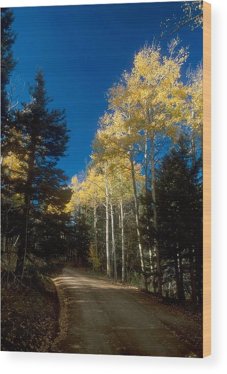 Landscape Wood Print featuring the photograph All Alone Garcia Park by Lynard Stroud