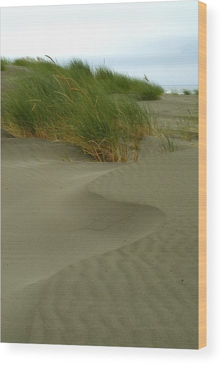 Beach Wood Print featuring the photograph Beach Grass by Jessica Wakefield