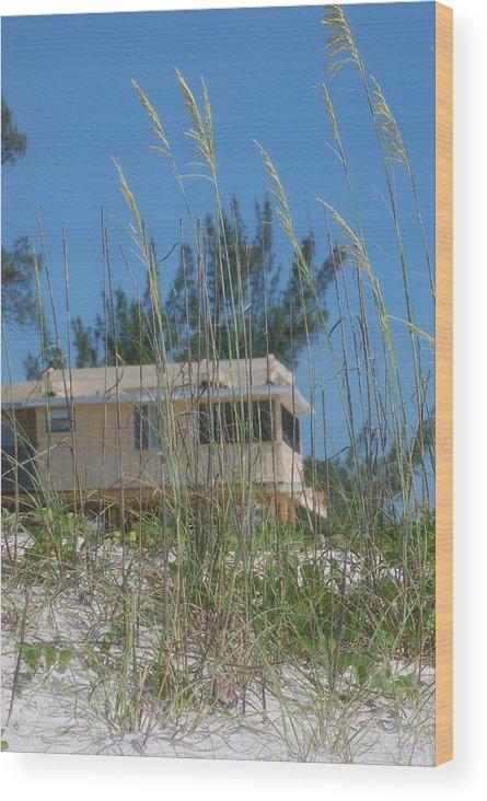 Landscape Wood Print featuring the photograph Beach House Through Sea Oats by Lisa Gabrius