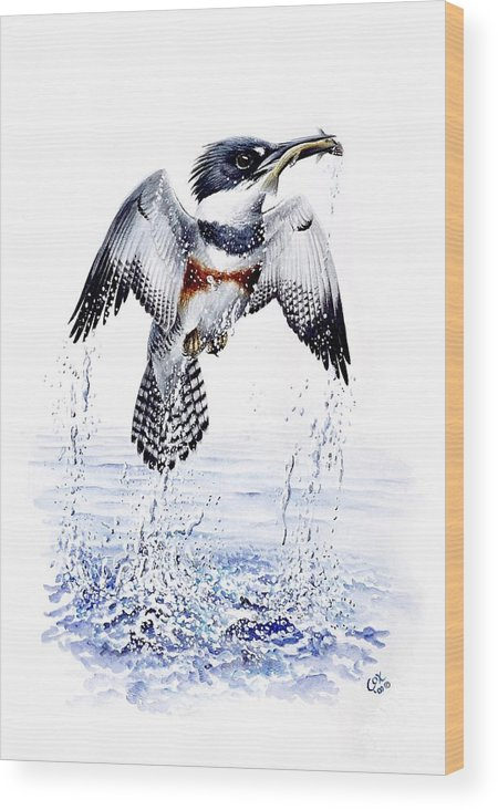 Chris Cox Wood Print featuring the painting Belted Kingfisher by Christopher Cox