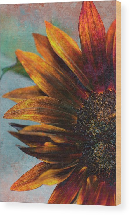 Flowers Wood Print featuring the photograph Bronzed By The Sun by Peter Olsen