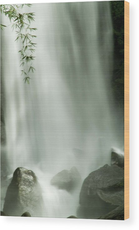 Trafalgar Falls Wood Print featuring the photograph Close View Vertical Of Trafalgar Falls by Todd Gipstein