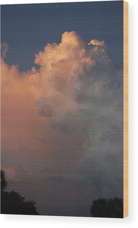 Clouds Wood Print featuring the photograph Clouds And More Clouds by Rob Hans