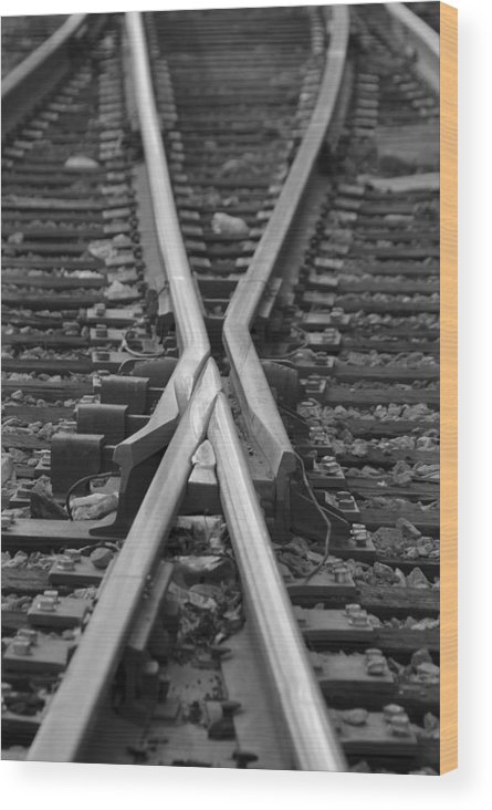 Tracks Wood Print featuring the photograph Decisions by Kelvin Booker
