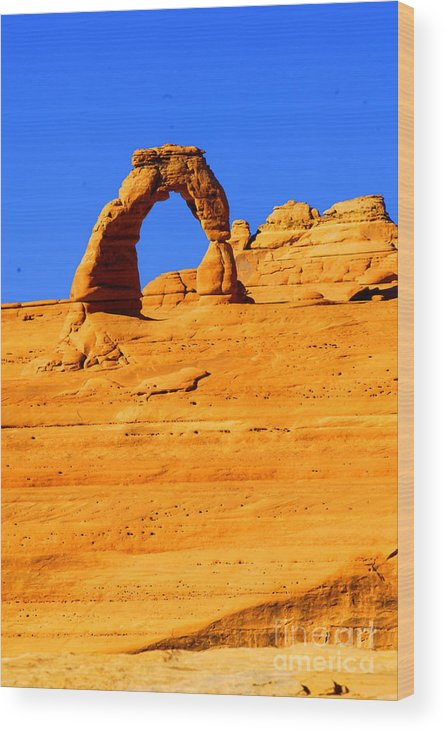 Arches Wood Print featuring the photograph Delicate Arch by Dennis Hammer