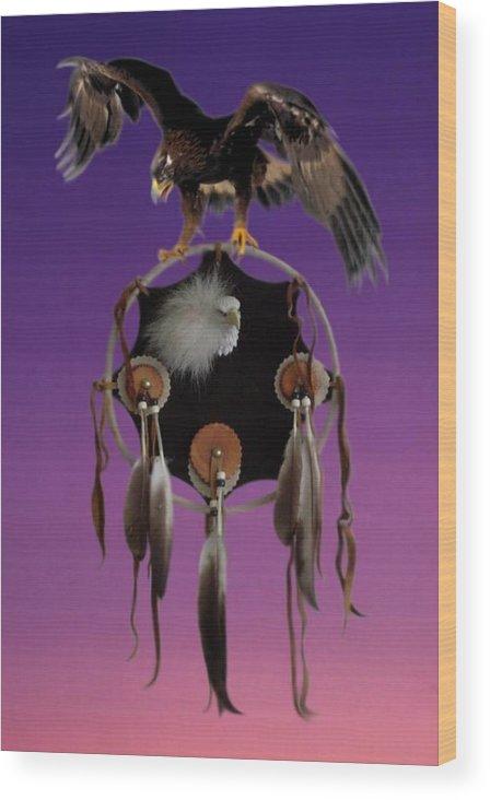 Dreamcatcher Wood Print featuring the photograph Eagle Spirit by Norman Reutter