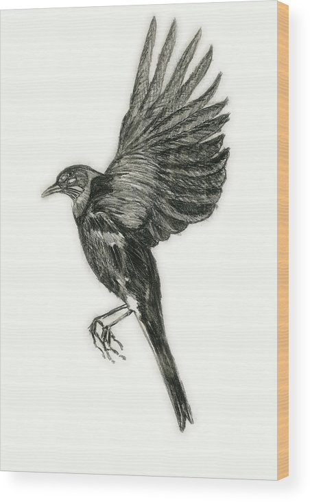 Bird Wood Print featuring the drawing Flying Bird by Michael Highsmith