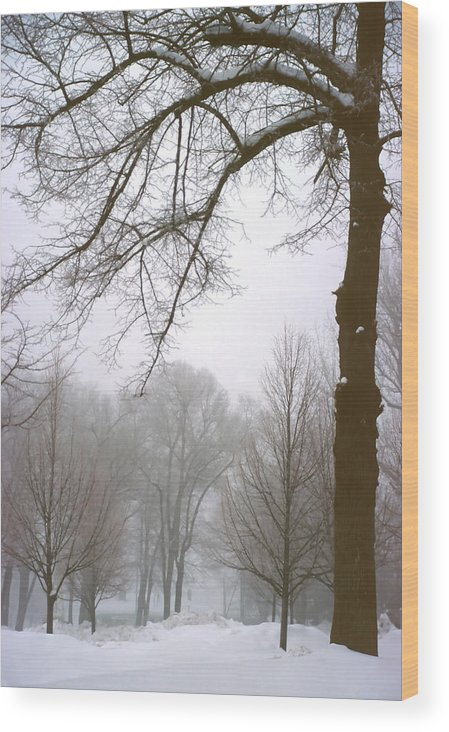 Fog Wood Print featuring the photograph Foggy Morning Landscape 10 by Steve Ohlsen