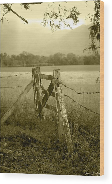Gate Wood Print featuring the photograph Forgotten Fields by Holly Kempe