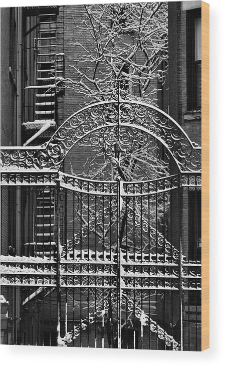 Snow Wood Print featuring the photograph Gate And Snow by Robert Ullmann