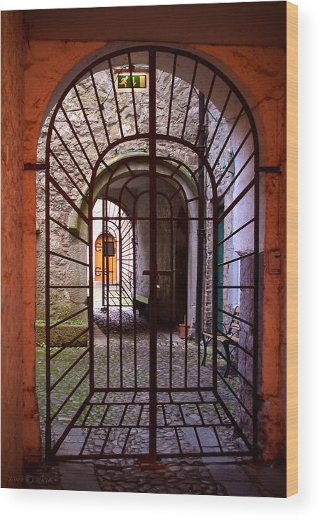 Gate Wood Print featuring the photograph Gated Passage by Tim Nyberg