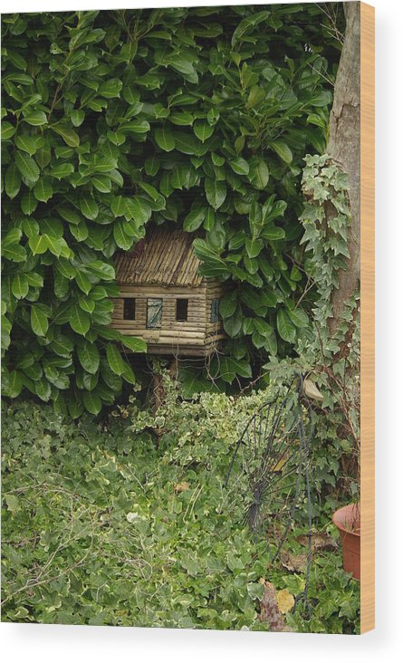 Hide Wood Print featuring the photograph Hidden Birdhouse by Cindy Johnston