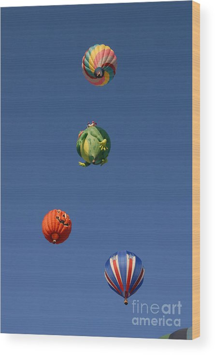Hot Air Balloon Wood Print featuring the photograph Hot Air Rally by Dennis Hammer
