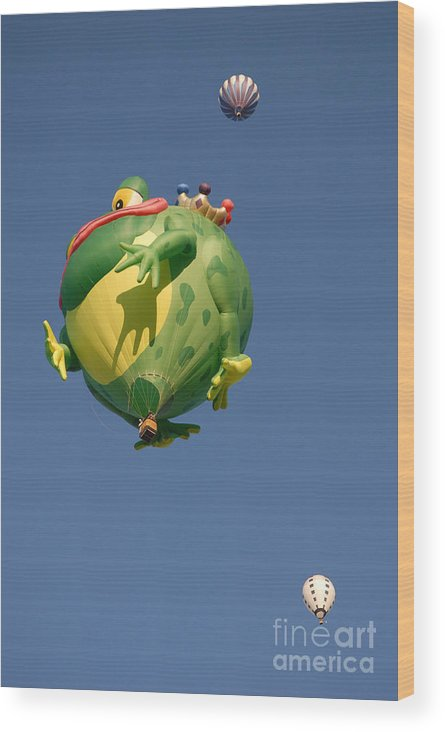 Hot Air Balloon Wood Print featuring the photograph Hot Frog by Dennis Hammer