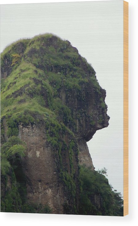 Face Wood Print featuring the photograph Image Of A Woman by Karen Wiles