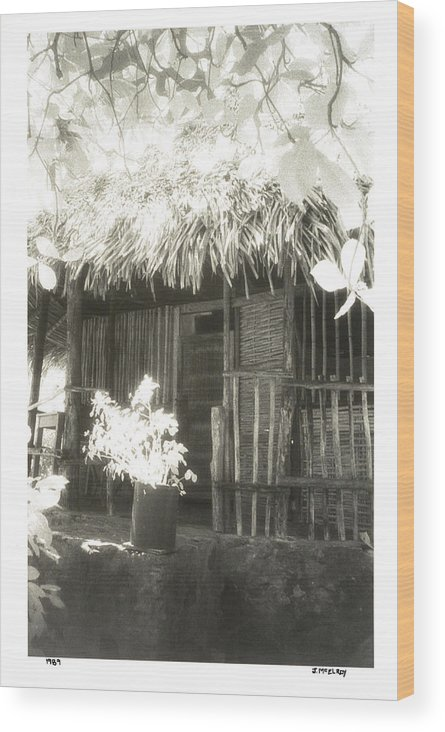 Fine Art Photography Wood Print featuring the photograph Jungle Hideaway by Jerry McElroy