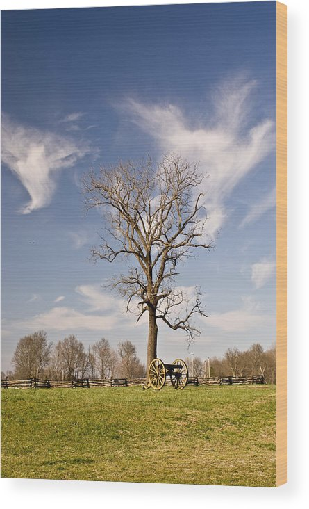 Civil Wood Print featuring the photograph Loneliness Of The Battle Field by Douglas Barnett