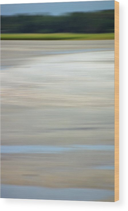 Coastal Wood Print featuring the photograph Low Country Coastal Blur by Suzanne Gaff