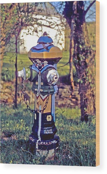 Fireplug Wood Print featuring the photograph Oldenburg Fireplug by Gary Wonning