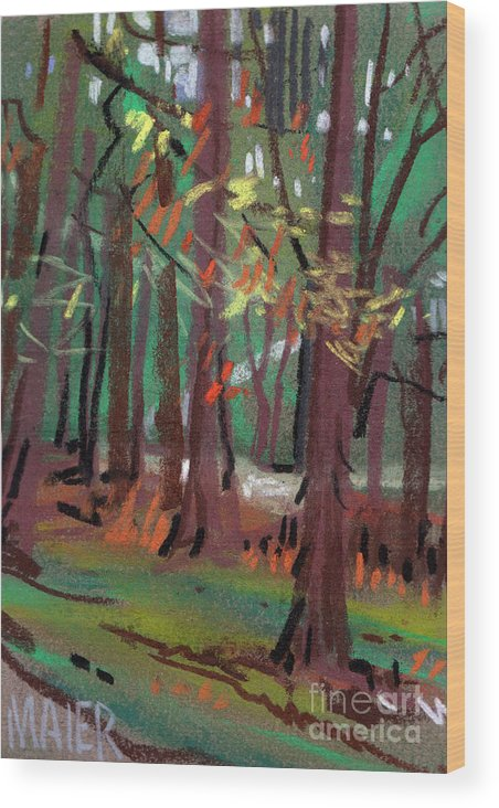 Path Wood Print featuring the drawing Path by Donald Maier