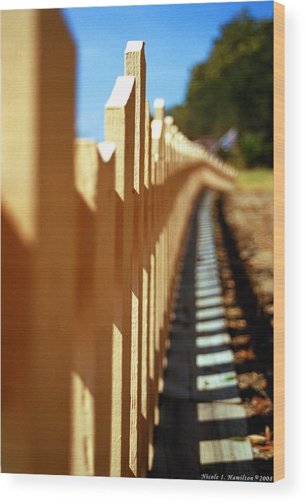 Fence Wood Print featuring the photograph Picket Fence by Nicole I Hamilton
