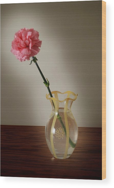 Flower Wood Print featuring the photograph Pink Carnation by Dave Chafin