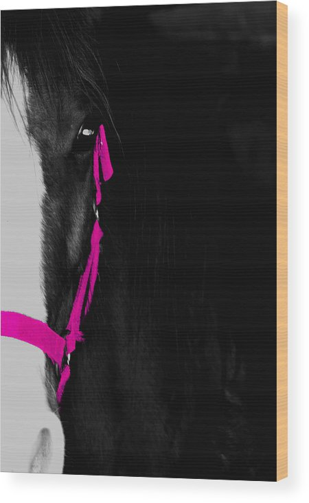 Pink Wood Print featuring the photograph Pink Halter by Hannah Breidenbach