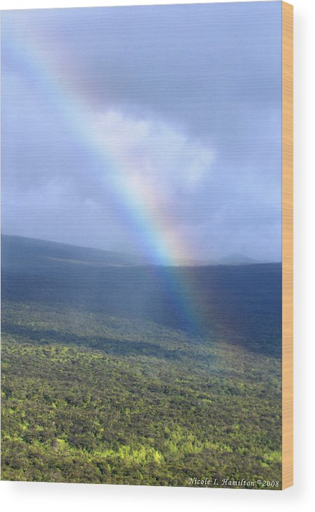 Rainbow Wood Print featuring the photograph Rainbow by Nicole I Hamilton