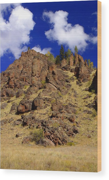 Colorado Wood Print featuring the photograph Rocky Butte by Marty Koch