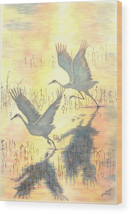 Cranes Taking Flight Wood Print featuring the painting Sandhill Cranes by Dan Bozich