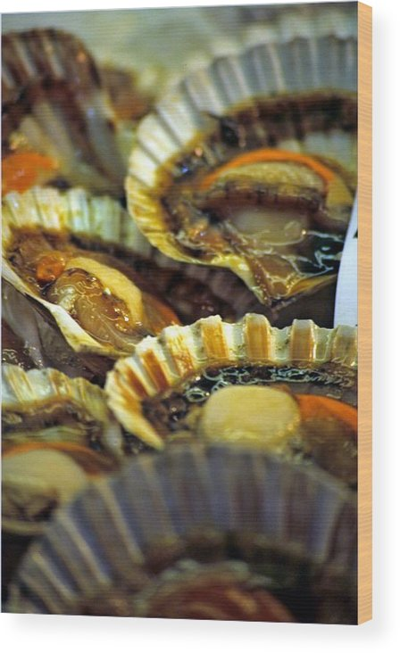 Venice Wood Print featuring the photograph Scallops At Rialto Market In Venice by Michael Henderson