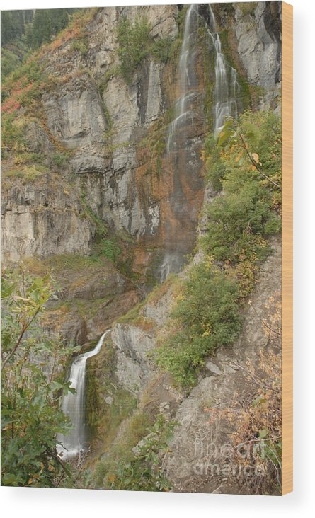 Waterfall Wood Print featuring the photograph Stewart Falls In Autumn by Dennis Hammer