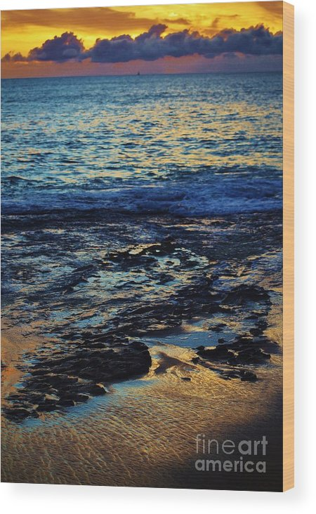 Sunset Wood Print featuring the photograph Sunset At Low Tide by Craig Wood