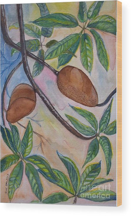 Fruit Wood Print featuring the painting Tropical Fruit Mamey by Jose Hau