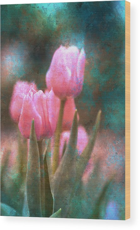 Autumn Wood Print featuring the photograph Tulips by Peter Olsen