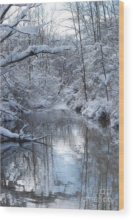 Winter Wood Print featuring the photograph Winter Stream by Lila Fisher-Wenzel