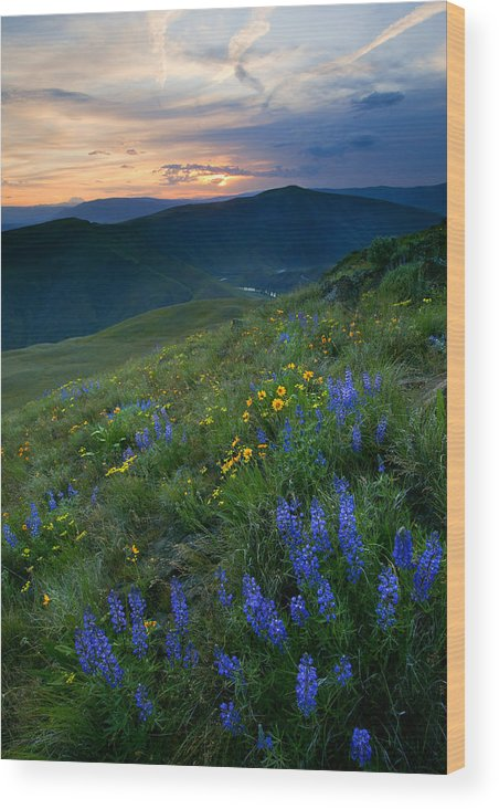 Yakima River Canyon Wood Print featuring the photograph Yakima River Canyon Sunset by Mike Dawson