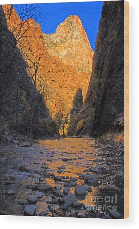 Utah Wood Print featuring the photograph Zion by Dennis Hammer