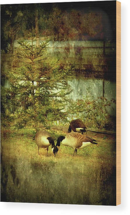 Autumn Wood Print featuring the photograph By The Little Tree - Lake Carasaljo by Angie Tirado