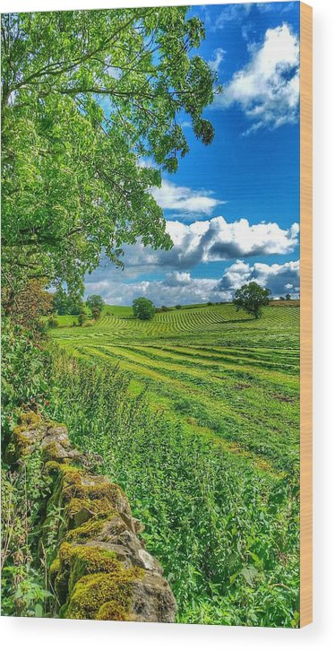 Landscape Wood Print featuring the photograph Summer View In Yorkshire by Paul Fox