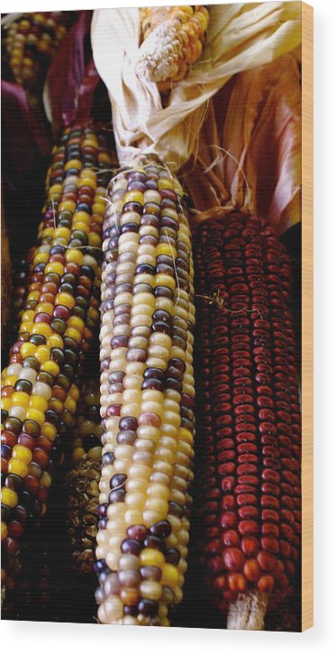 Farmers Market Wood Print featuring the photograph Indian Corn by Sonja Anderson